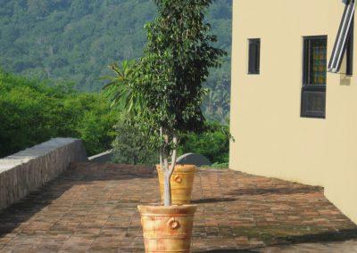 casa-carmen-front-jungle-side-porch